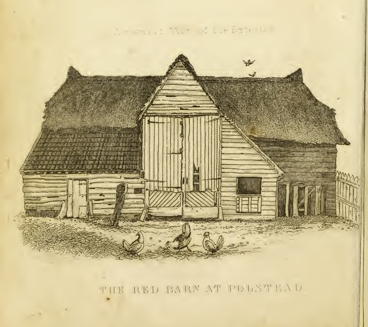 Red Barn Sepia Drawing